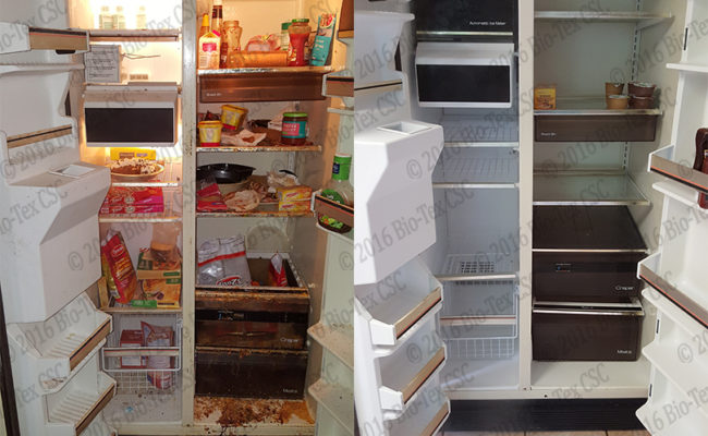 Refrigerator-web